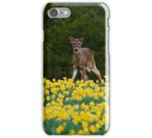 A Doe and Daffodils II iPhone Case/Skin