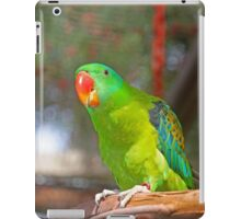 Philippine Blue Nape Parrot iPad Case/Skin