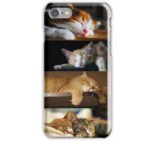 Sleepy Time - Kitties iPhone Case/Skin