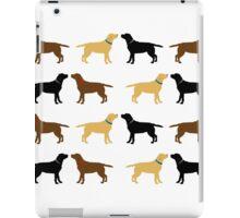 Labradors iPad Case/Skin