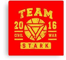 Team Stark Canvas Print