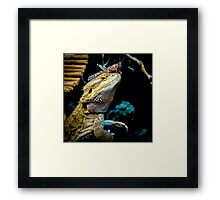 Smaugling's Dinner Hat Framed Print