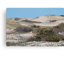 Sand dunes in the spring Canvas Print