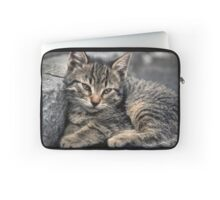 Curbside Kitten Laptop Sleeve