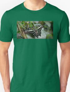 Black and White Butterfly T-Shirt