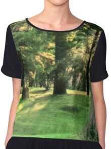 Spring Afternoon in Brookdale Park Chiffon Top