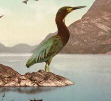 Bird Sanctuary Sticker