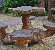 Garden Picnic Table by lezvee