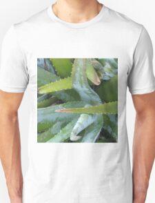 All Aloe T-Shirt
