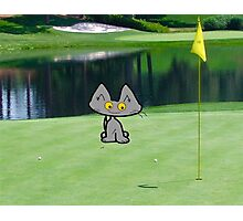 Cat  Playing Golf On The 18 Hole Photographic Print