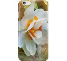 Sweet Momento iPhone Case/Skin