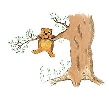 Silly bear and tree Photographic Print