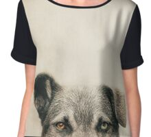 Half Dog Chiffon Top