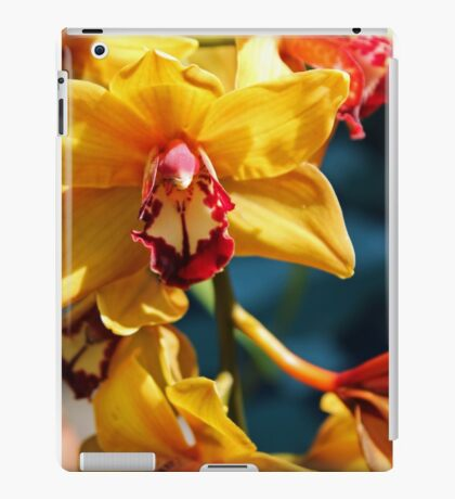 Yellow Orchid in bloom iPad Case/Skin