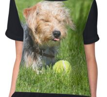 Puppy sticking tongue out Chiffon Top