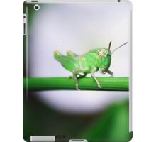 Grass Hopper iPad Case/Skin