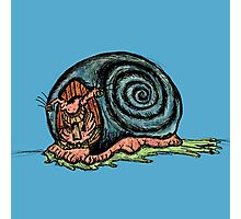 Comedy Snail Photographic Print