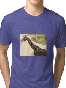 2016 Giraffe Tri-blend T-Shirt