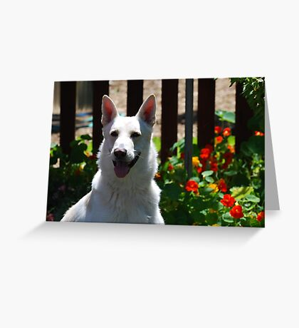 Dog With Flowers Greeting Card