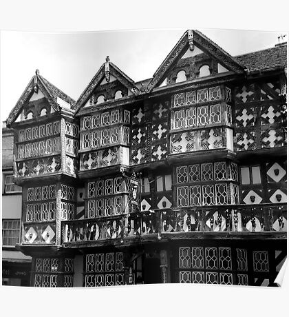 Elizabethan style architecture Poster