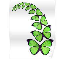 Green butterflies in a spiral Poster