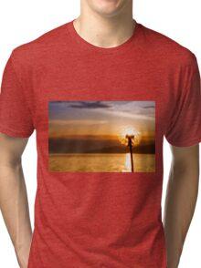 Dandelion sunset  Tri-blend T-Shirt