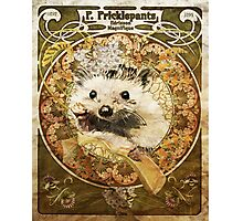 Cute Art Nouveau Hedgehog  Photographic Print