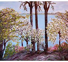Burke's Cove in Spring Photographic Print