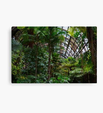Urban Rainforest Canvas Print