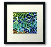 Van Gogh HDR Garden Irises Framed Print