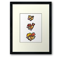 Pidgeot Evolution Framed Print