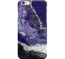 Sq4 Abstract Modern Painting iPhone Case/Skin