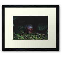 Miniature World #3 Framed Print