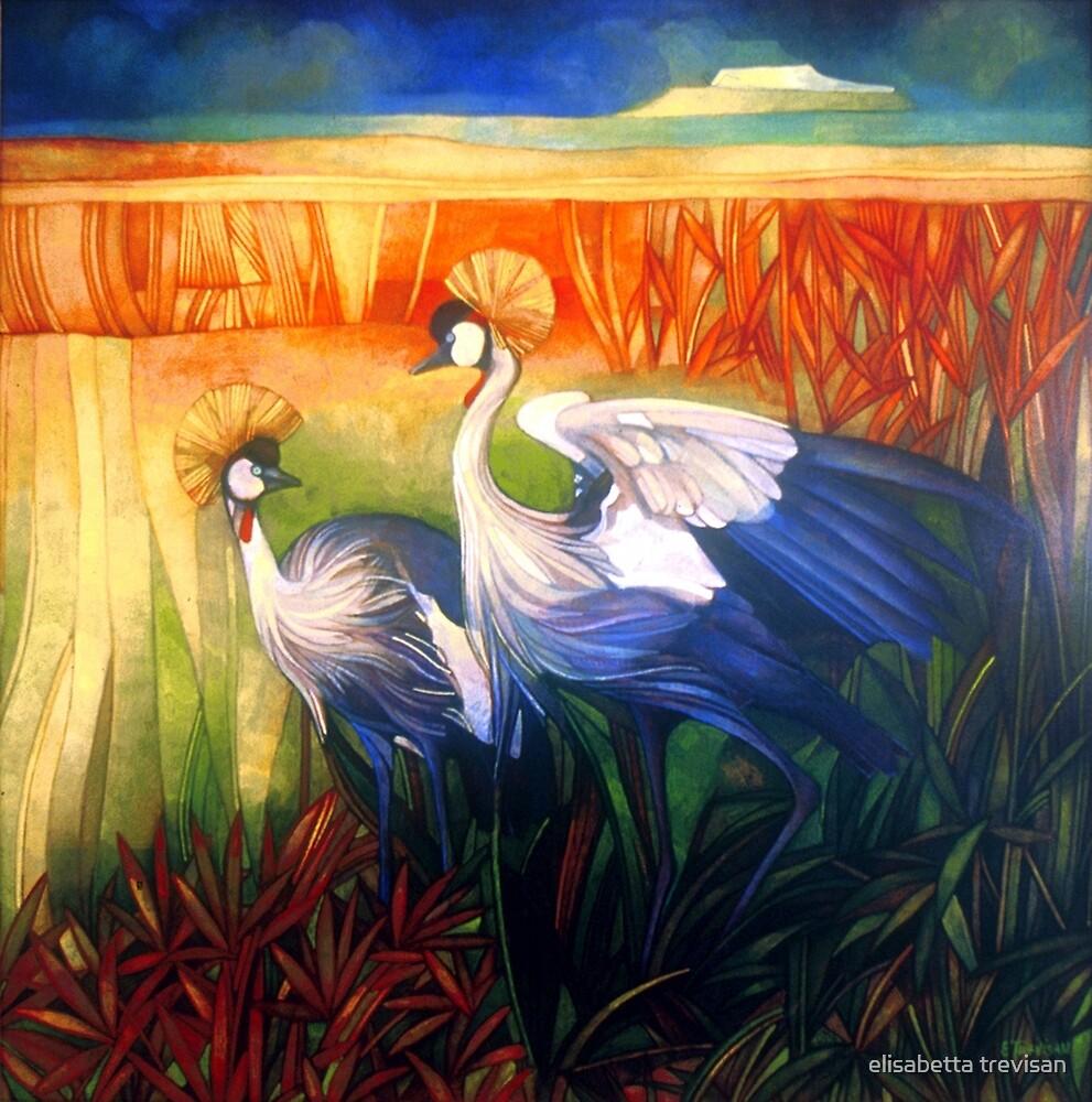 "crane ""balearica pavonina"" by elisabetta trevisan"