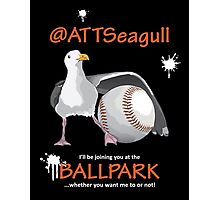 AT&T Seagull Photographic Print