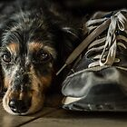 Waiting for the Walk by Randy Turnbow