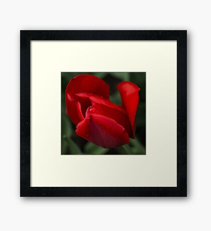 Just One Drop Framed Print