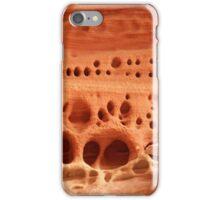 Sandstone Designs iPhone Case/Skin
