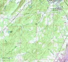 USGS TOPO Map Alabama AL Pell City 304804 1958 24000 Sticker
