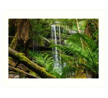 Russell Falls with the Ferns Art Print