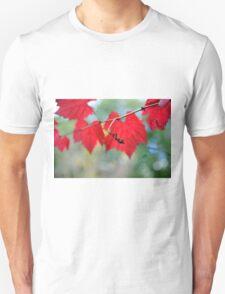 Autumn Twirls T-Shirt