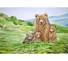 Mother Bear Photographic Print