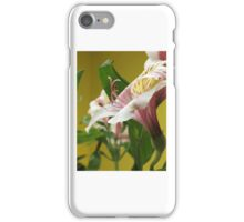 Alstroemeria #2 iPhone Case/Skin