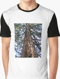 Tall Tree - Launceston Cataract Gorge Graphic T-Shirt