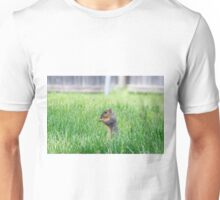 Squirrel sitting up in tall grass Unisex T-Shirt