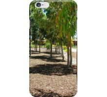 Young Eucalypts iPhone Case/Skin