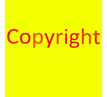 Copyright 3 Photographic Print