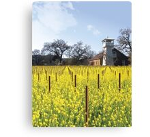 Napa Valley - Water Tower Canvas Print