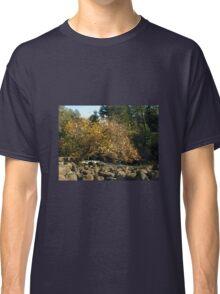 Autumn in Tasmania - Launceston Cataract Gorge Classic T-Shirt