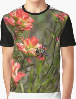 Bumble Bee on bright pink Indian Paintbrush flowers Graphic T-Shirt